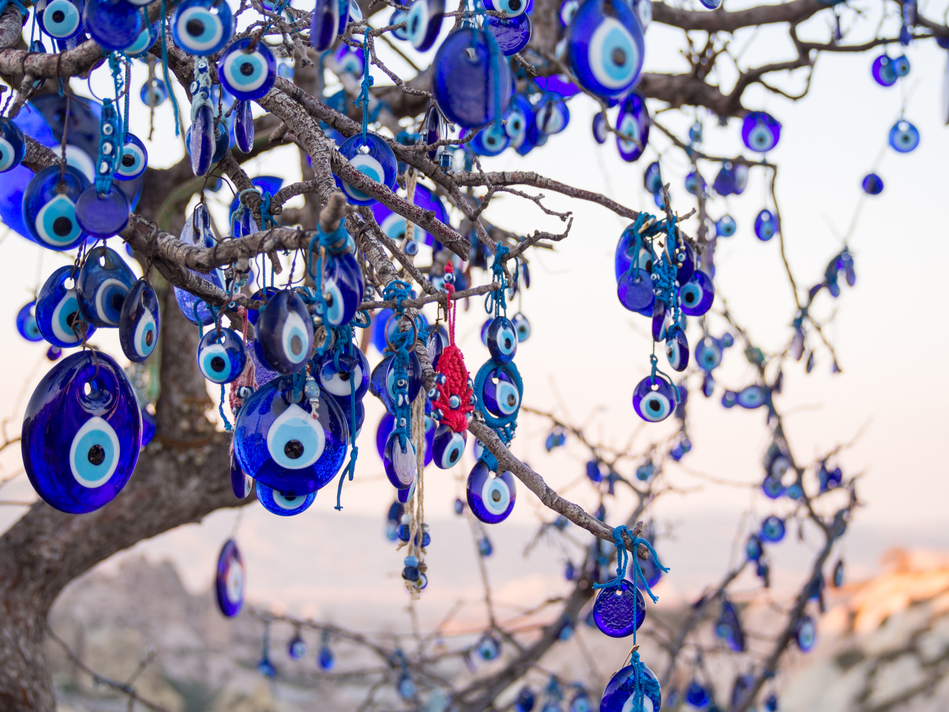 Tree with nazar (eye-shaped amulet believed to protect