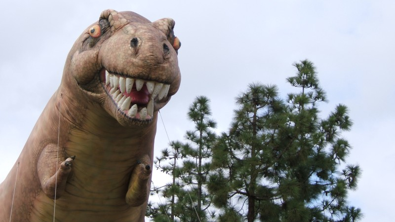Helium-Rex in its natural environment