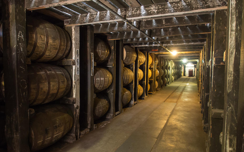 Rows of Buffalo Trace bourbon barrels