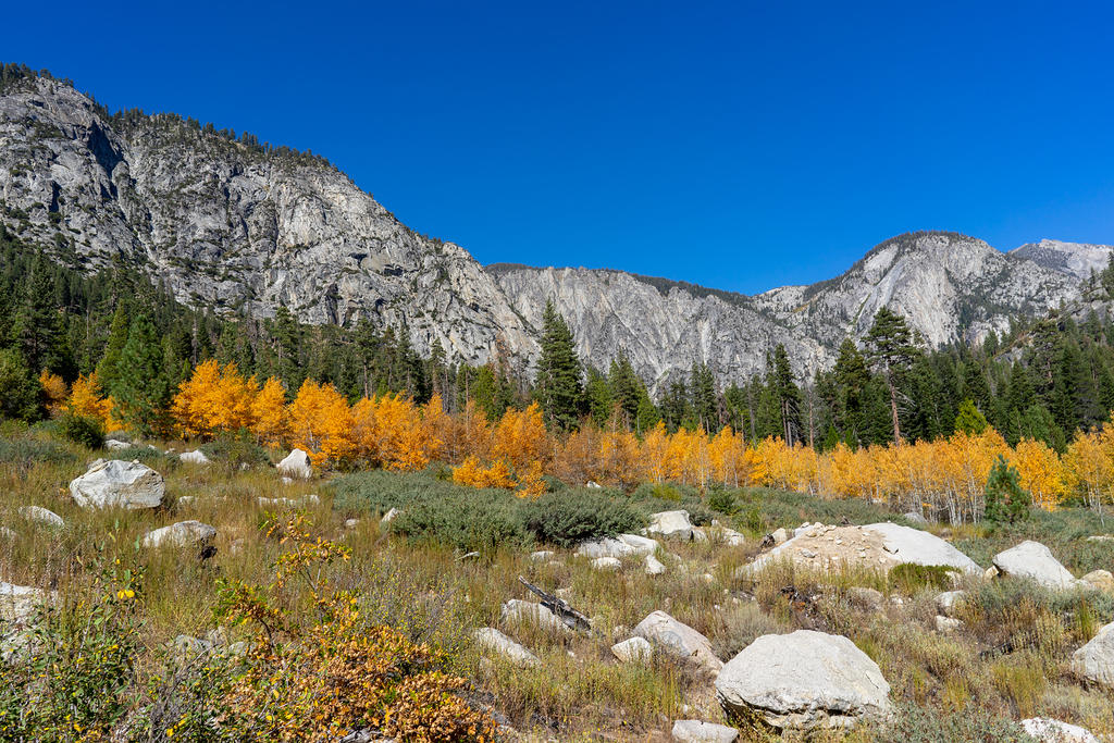 Upper Paradise Valley with fall colors