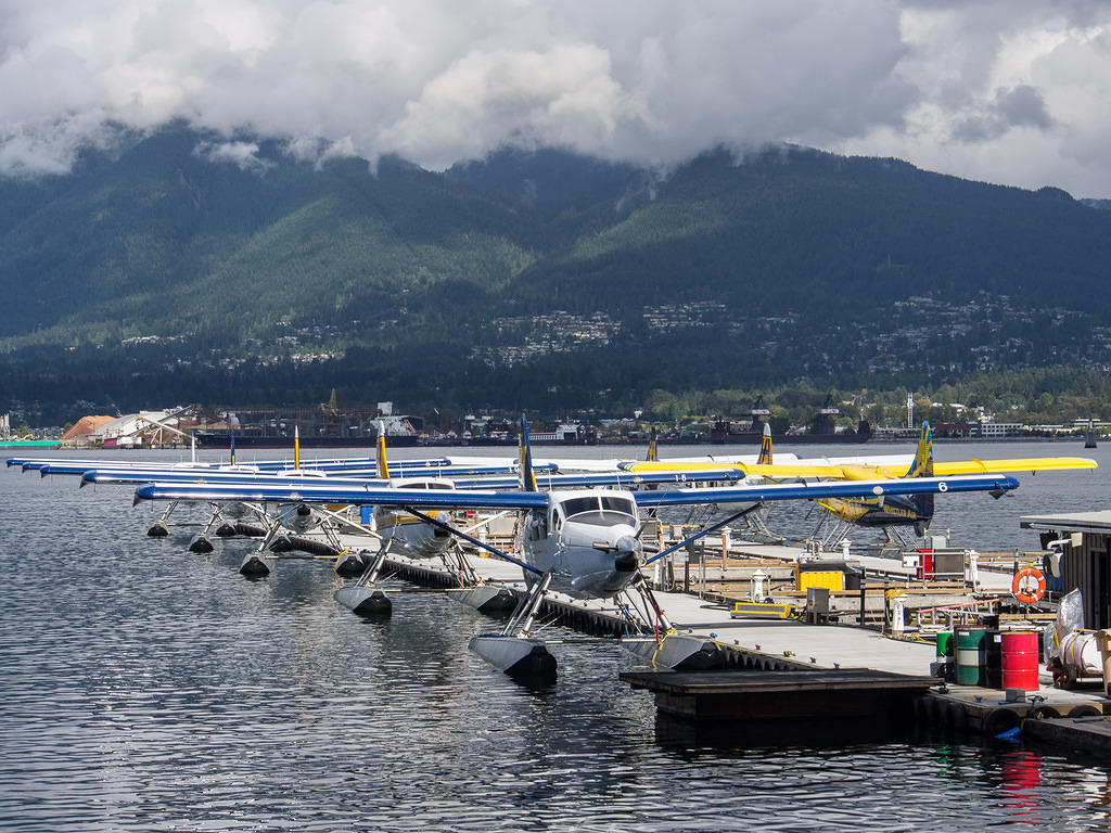 Seaplanes lined up