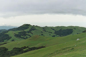 The green hills of SLO