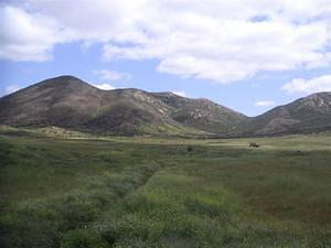 Green fields and Iron Mountain