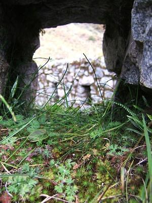 Inka ruins window