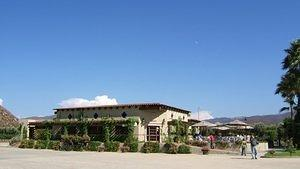 Tasting room and store of LA Cetto Winery