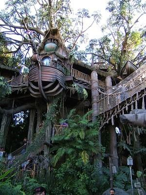 Swiss Family Robinson (something else now?) tree house