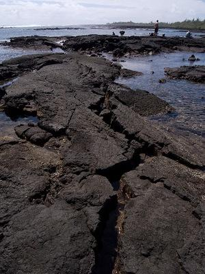 Cracks in the lava tide pools