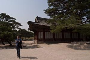 Kerey checking the facts at Changgyeong Palace