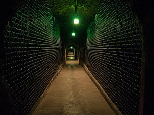 A mile of stacked sparkling wine at Schramsberg Vineyards