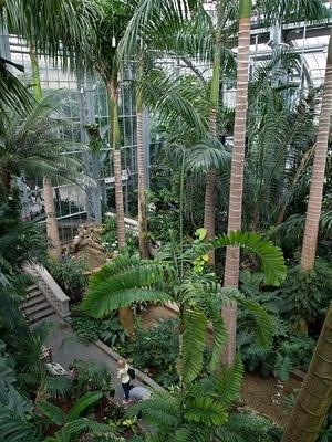 Inside the United States Botanic Garden
