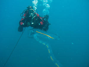 Paul and Pete watching a salp chain