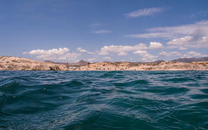 Los Arbolitos from the water