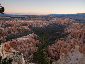 Dawn view of Bryce