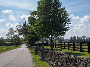 Stone and black wood fences around horse farms in Versailles Kentucky