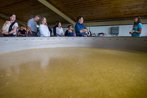 Fermentation at Willett
