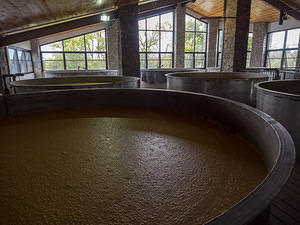 Yeast has a great view at Willett Distillery