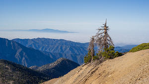 South view from Mt Baden-Powell