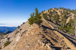 Mt Baden-Powell saddle