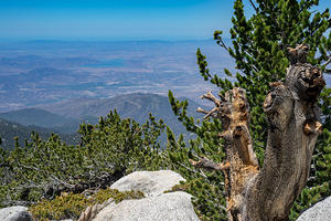 Mt. San Jacinto Summit, looking west