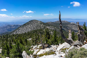 Looking south from near the summit of San Jacinto
