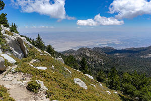 Mt. San Jacinto Summit Trail