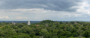 Tikal view from Temple IV