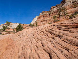Zion rock striation