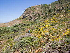 Anna walking the Lost Coast Trail