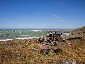 Driftwood shelter, Lost Coast