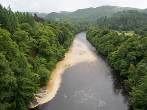 River Tay - tannins and mud